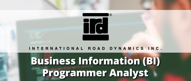 Business Information (BI) Programmer Analyst